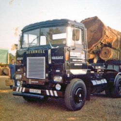 Log Lorry